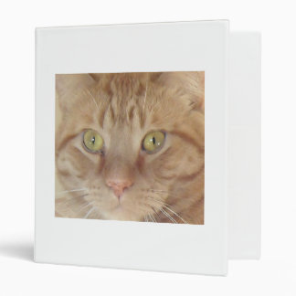 Orange Tabby Cat Binder