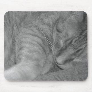 Orange Tabby Cat/Black & White Photo Mouse Pad