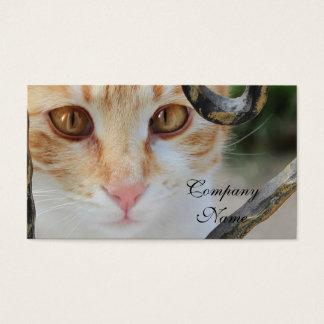 Orange Tabby cat Business Card