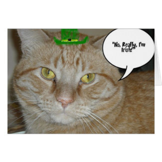 Orange Tabby Cat Cards