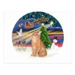 Orange Tabby Cat - Christmas Magic Postcard