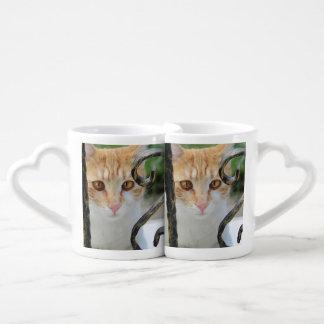Orange Tabby cat Coffee Mug Set