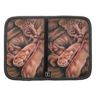 Orange Tabby Cat Drawing Curled Up Folio Planner