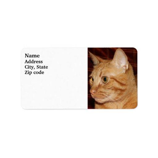 Orange Tabby Cat Face Profile Address Label