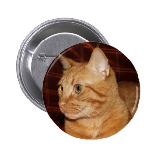 Orange Tabby Cat Face Profile 2 Inch Round Button