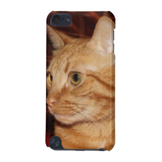 Orange Tabby Cat Face Profile iPod Touch 5G Case