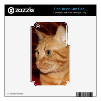 Orange Tabby Cat Face Profile Decals For iPod Touch 4G