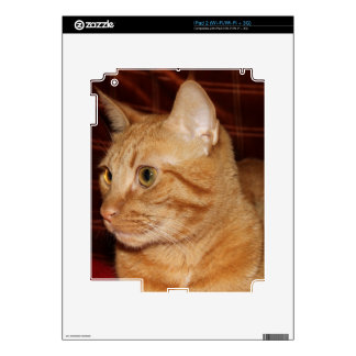 Orange Tabby Cat Face Profile Skin For The iPad 2