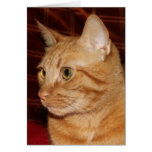 Orange Tabby Cat Face Profile Stationery Note Card