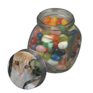 Orange Tabby cat Glass Candy Jars