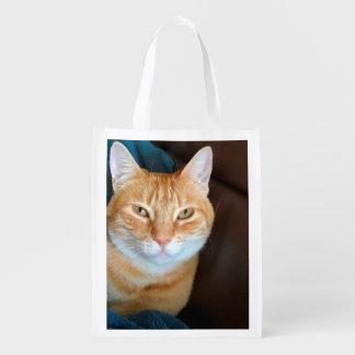 Orange tabby cat grocery bag