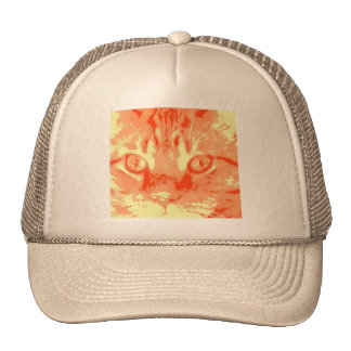 Orange Tabby Cat Hat