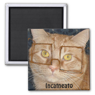 Orange Tabby Cat/Incognito Humor Magnet