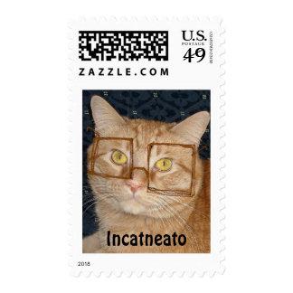 Orange Tabby Cat/Incognito Humor Postage