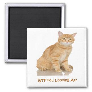 Orange Tabby Cat Magnet