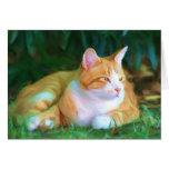 Orange tabby cat notecard card
