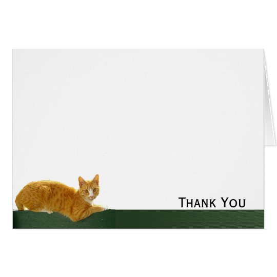 Orange Tabby Cat on Green Fence Card