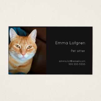 Orange tabby cat pet sitter business card