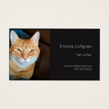 Professional Business Orange tabby cat pet sitter business card