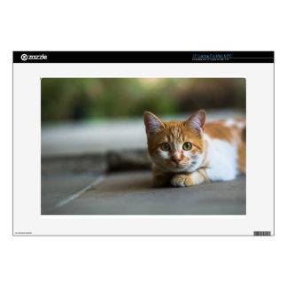 Orange tabby cat portrait skin for laptop