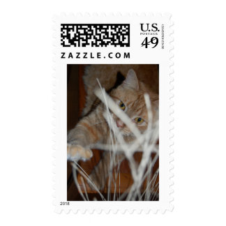 Orange Tabby Cat Postage Stamps