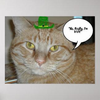 Orange Tabby Cat Print