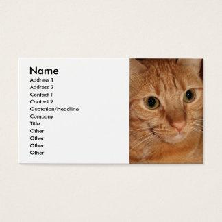 Orange Tabby Cat Profile Face Close up Business Card