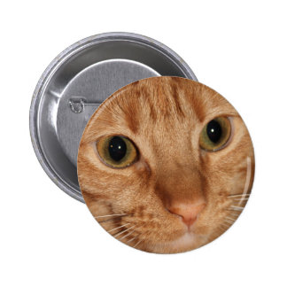 Orange Tabby Cat Profile Face Close up 2 Inch Round Button