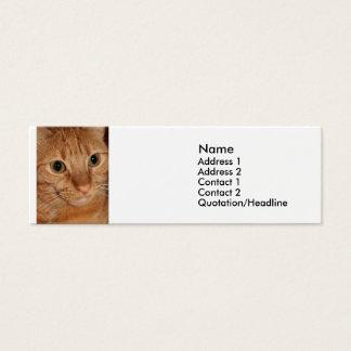 Orange Tabby Cat Profile Face Close up Mini Business Card