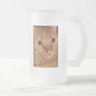 Orange Tabby Cat Profile Face Close up 16 Oz Frosted Glass Beer Mug