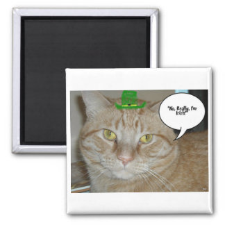 Orange Tabby Cat Refrigerator Magnet