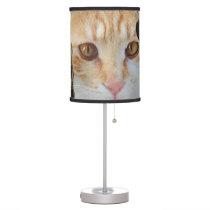 Orange Tabby cat Table Lamp