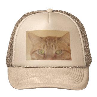 Orange Tabby Cat Trucker Hat