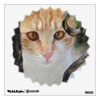 Orange Tabby cat Wall Decal