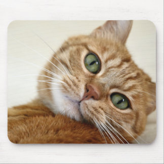 Orange Tabby Cat with Green Eyes Mouse Pad