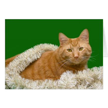 Christmas Themed Orange tabby Christmas Card