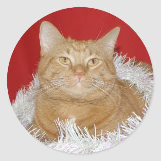 Orange tabby Christmas Classic Round Sticker