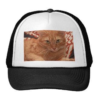 Orange Tabby Trucker Hat