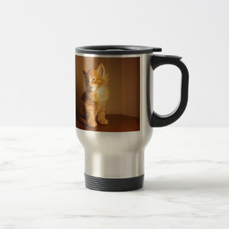 Orange Tabby Kitten 15 Oz Stainless Steel Travel Mug