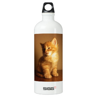 Orange Tabby Kitten Aluminum Water Bottle