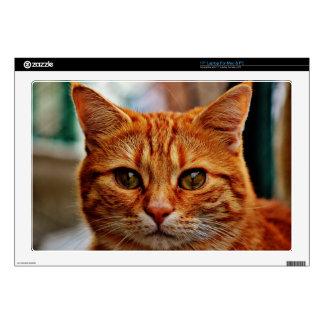 Orange Tabby Kitten Cat Face, Laptop Skin Mac PC