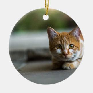 Orange tabby kitten. ceramic ornament
