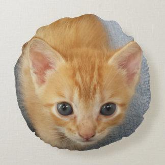 Orange Tabby Kitten Round Pillow
