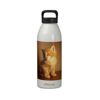 Orange Tabby Kitten Drinking Bottle
