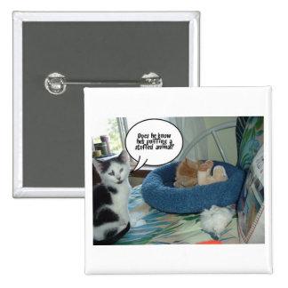 Orange Tabby Kitty Cat Button
