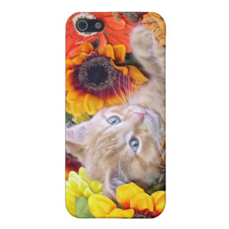 Orange Tabby Kitty Cat, Pretty Sunflowers Flowers Case For iPhone SE/5/5s
