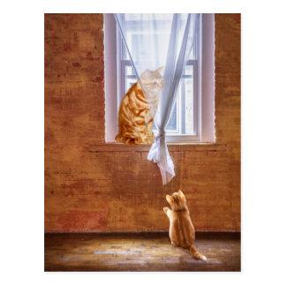 Orange tabby kitty cats postcard