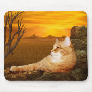 Orange tabby lazes in the sun mouse pad
