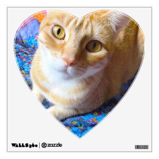 Orange tabby on quilt wall decal