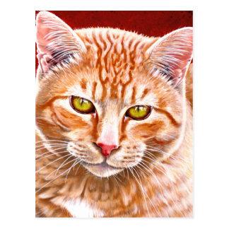 Orange Tabby Painting Postcards
